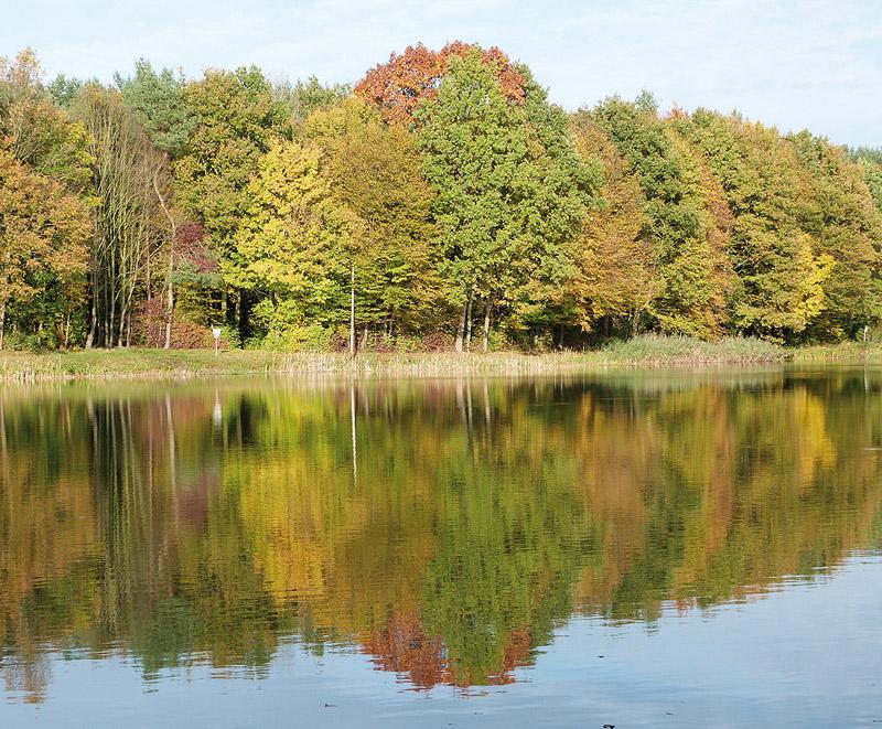 In Langenhagens Norden: der Waldsee