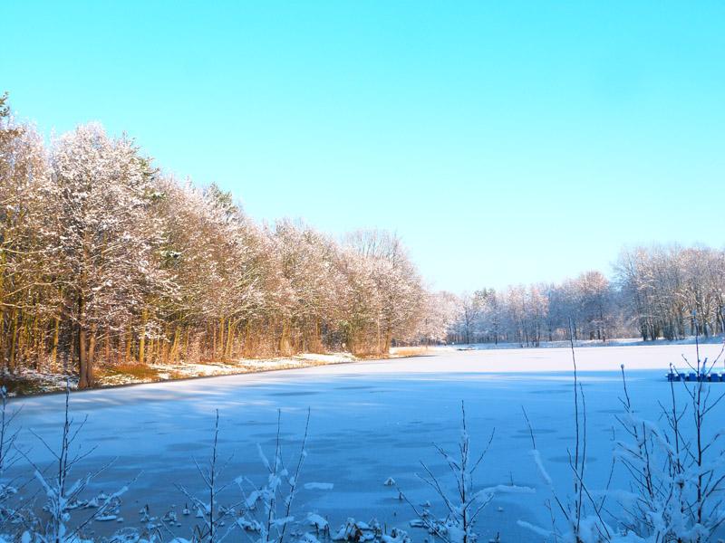 Sonnenglanz am schneebedeckten Waldsee in Krähenwinkel