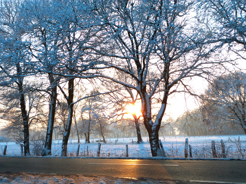 Sonnenglanz über schneebedecktem Feld bei Engelbostel