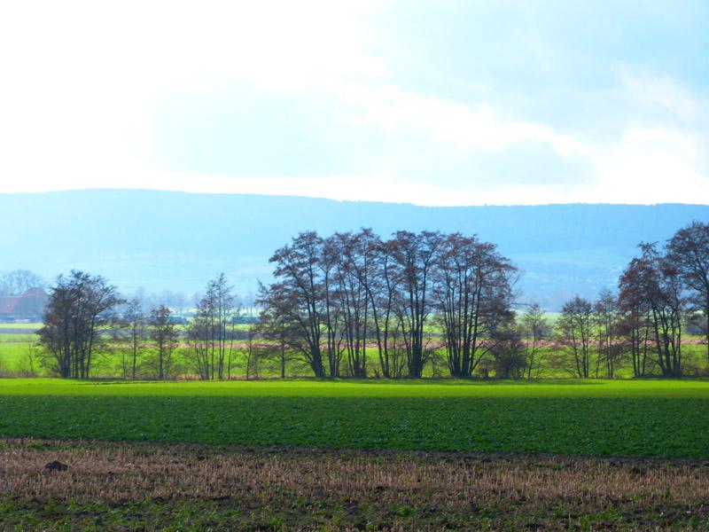 Blick vom Mühlenberg bei Ostermunzel