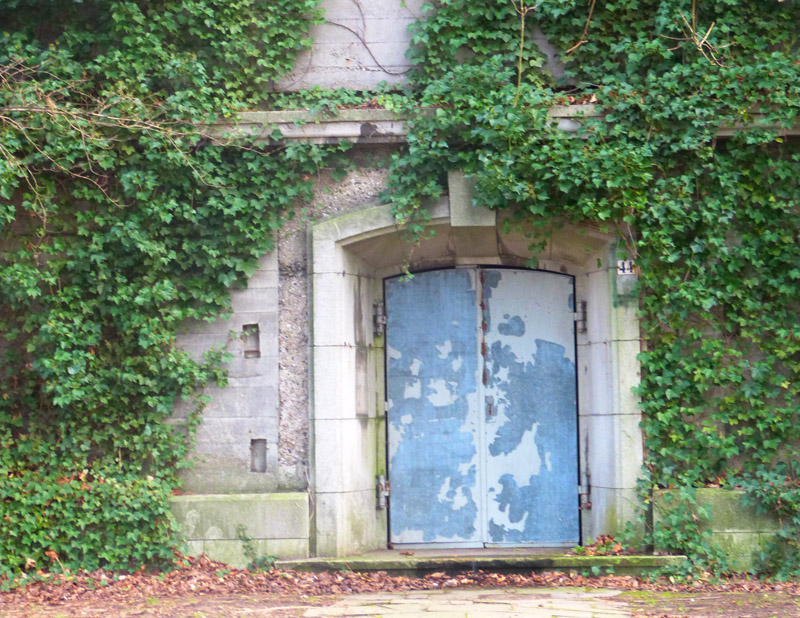 Der alte Hochbunker - malerisch bewachsen
