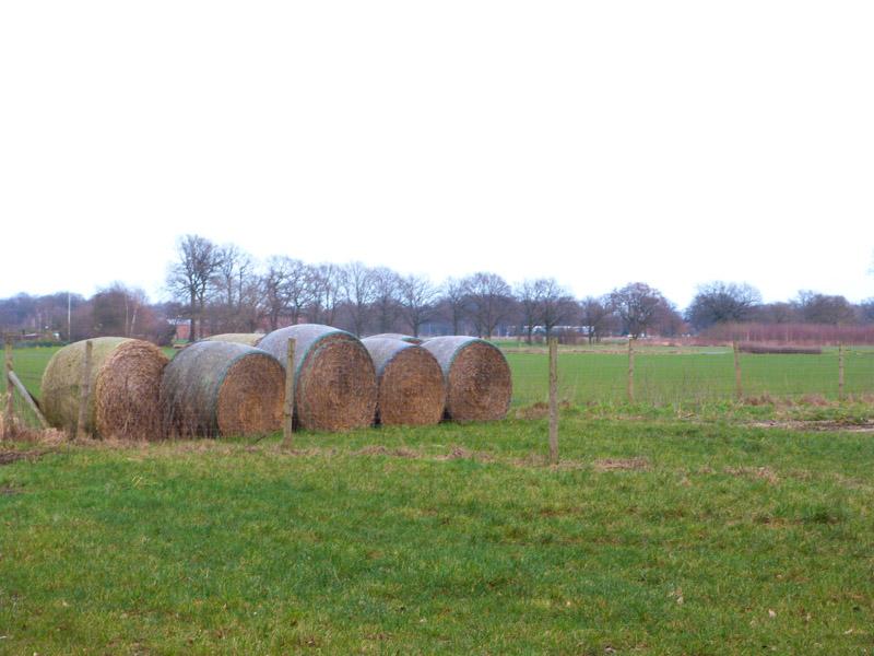 Nördlich von Vinnhorst beginnt ein ausgedehntes Landschaftsschutzgebiet