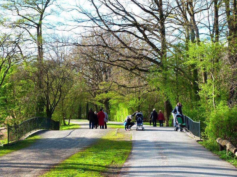 Viel los im Hermann-Löns-Park