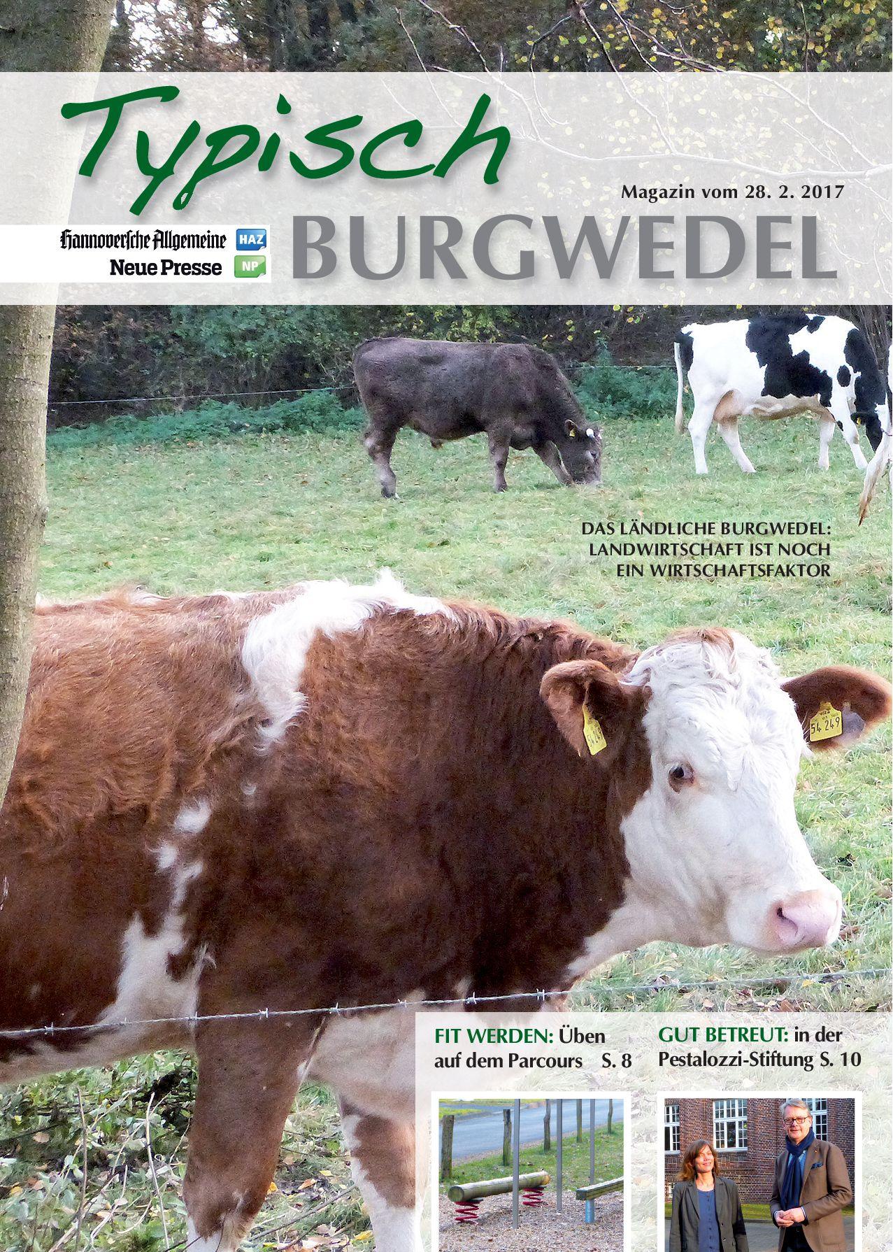 burgwedel-nr-7-vom-28-02-2017
