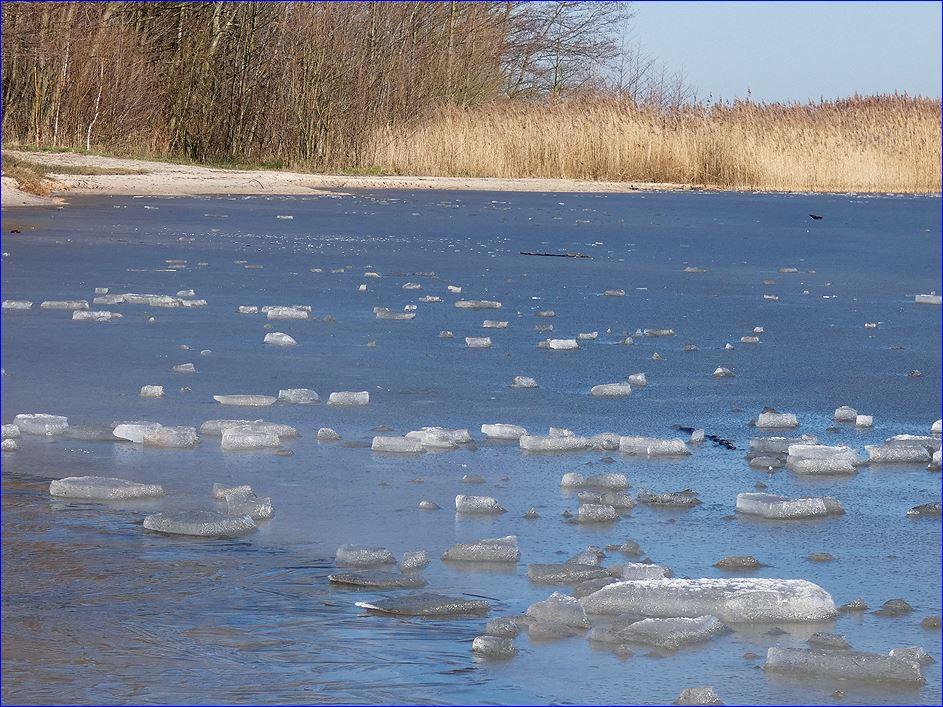 Zugefrorenes Steinhuder Meer
