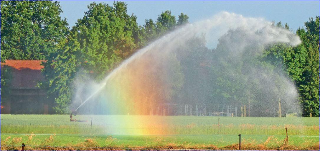 Bewässerung mit Regenbogenfarben