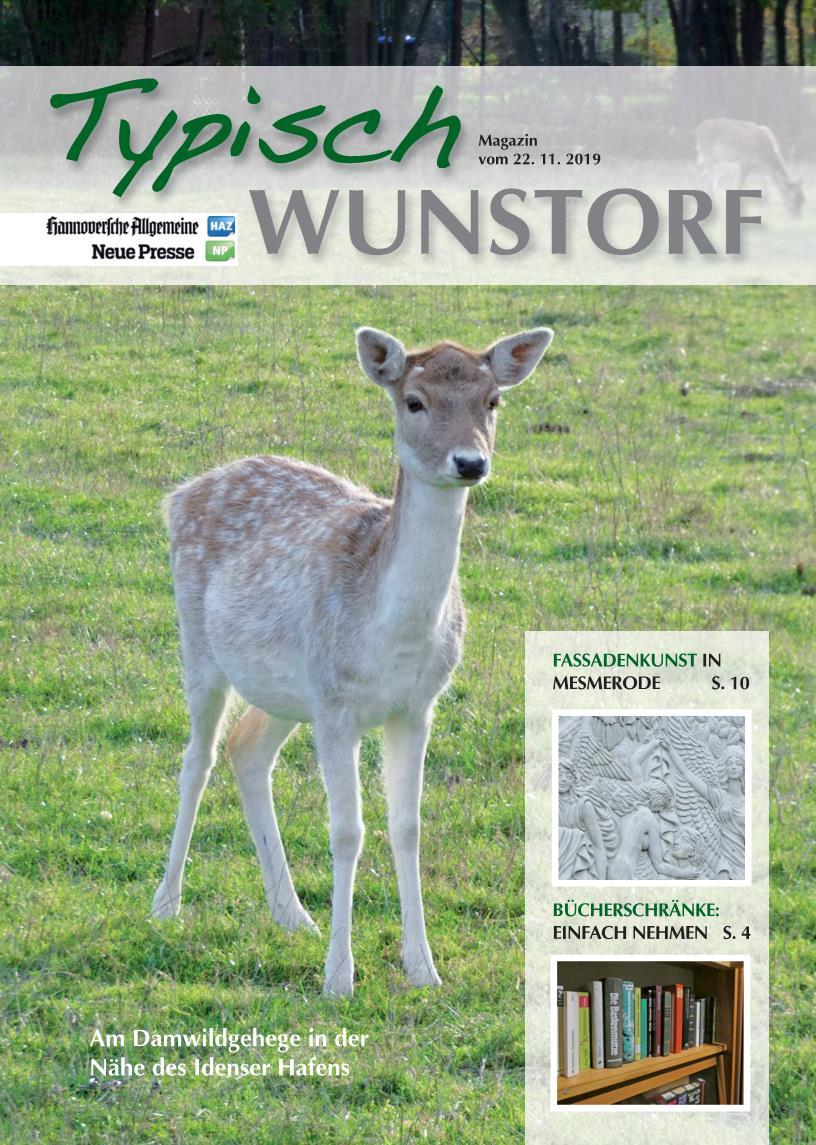 wunstorf-vom-22-11-2019
